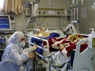 عدد الاصابات بفيروس كورونا في مدينة اربد الاردن